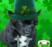 ♥‿♥ DO U EVER FEEL AFTER A FEW DRINKS YOUR SEEING WAY TOO MANY SHAMROCKS?? ♥‿♥ by ╰⊰✿ℒᵒᶹᵉ Bonita✿⊱╮ Lalonde✿⊱╮
