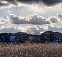 Snodland Paper Mill Across The Reeds by Dave Godden