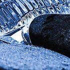 Crystalline Slipper by LadyEloise