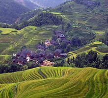 A Yao Village in Longsheng, China by Arianey