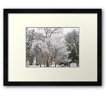Feb. 19 2012 Snowstorm 6 Framed Print