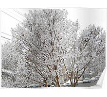 Feb. 19 2012 Snowstorm 13 Poster