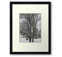 Feb. 19 2012 Snowstorm 16 Framed Print