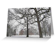 Feb. 19 2012 Snowstorm 19 Greeting Card