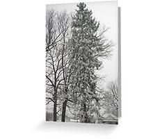 Feb. 19 2012 Snowstorm 21 Greeting Card