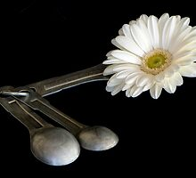 Add One Heaping Tablespoon of Flower by TeresaB