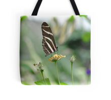 Zebra Longwing - Heliconius Charitonius Tote Bag