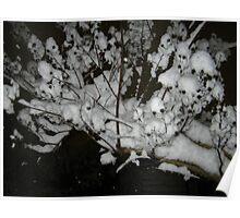 Feb. 19 2012 Snowstorm 35 Poster