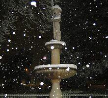 Feb. 19 2012 Snowstorm 54 by dge357