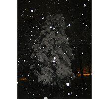 Feb. 19 2012 Snowstorm 59 Photographic Print