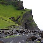 Iceland, Dyrholaey basalt columns by Derek  Rogers