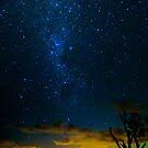 Cootharaba Stars by Steven  Lippis