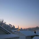 Feb. 19 2012 Snowstorm 70 by dge357