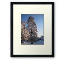 Feb. 19 2012 Snowstorm 110 Framed Print