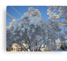 Feb. 19 2012 Snowstorm 114 Canvas Print