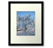 Feb. 19 2012 Snowstorm 120 Framed Print