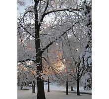 Feb. 19 2012 Snowstorm 132 Photographic Print