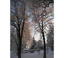 Feb. 19 2012 Snowstorm 135 Photographic Print