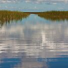 The View from an Airboat by AudraJS