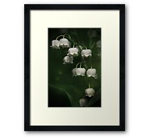 In the shadow... Framed Print