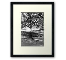 grow and grow Framed Print