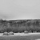 Winter Bales of The QU'APPELLE VALLEY Saskatchewan by Leslie van de Ligt