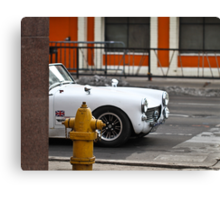 Vrooooom.... Canvas Print