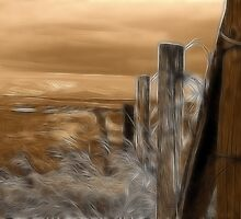Along the Fence Line by Alyce Taylor