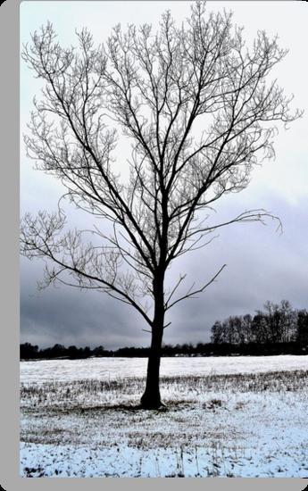 tree by uriel909