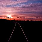 Into the sunset by nicholas stewart
