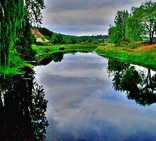 River Traiguen, Chile by Daidalos