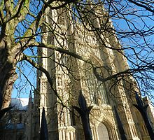 The Minster by Johnathan Bellamy
