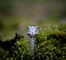 Moss Ring Stand by trueJustice