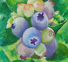 Blueberry iPhone and iPad case by Dianne  Ilka