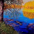 October Afternoon by Sher Nasser