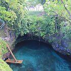 Sua Ocean Trench Samoa by taryn88