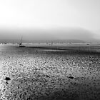 Tide gone out by swandundee