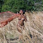 Beautiful Nude Woman in Tall Grass by cspmedia