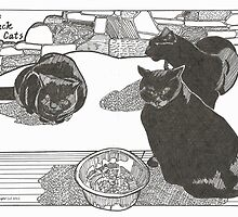 Three Black Cats by Sally O'Dell
