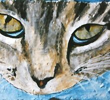 Cat Eyes - Acrylic on Stone by Loreen Finn