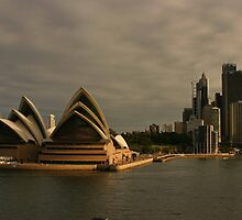 Golden Glow Sydney Opera House by Noel Elliot