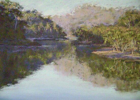 Lyrebird Track reflections by Terri Maddock