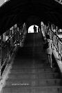 the climb (black and white) by Karl David Hill