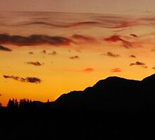 Sunset Silhouettes by Tracy Friesen