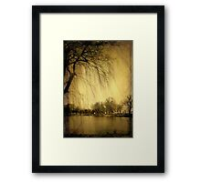 Weeping Willow © Framed Print
