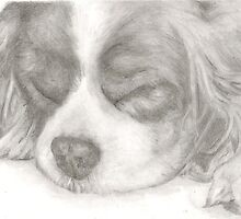 Sleeping Spaniel by RebeccaVose