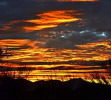 Tucson Sunset #1 by Scott Switzer