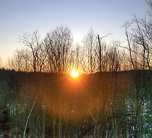 First Sunrise by Monica M. Scanlan