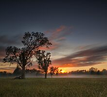 Beauty of Badgerys Creek by Malcolm Katon