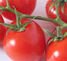 Tomatoes by Robert Worth